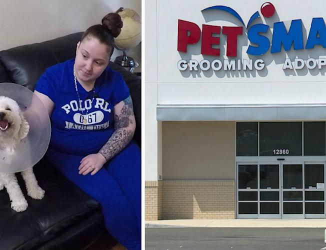 Dog's Nose Cut Open at Virginia PetSmart: 'My Dog Was in Pain, Suffering'