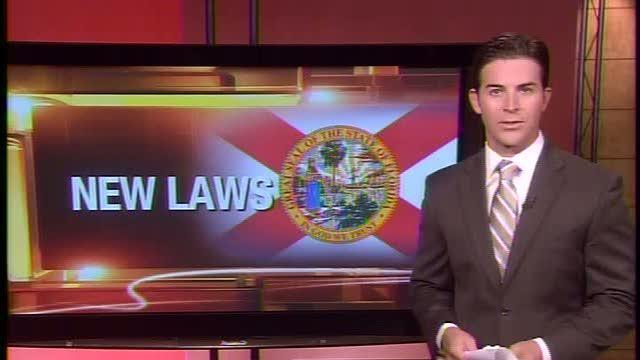 More than 160 new laws in Florida went into effect today