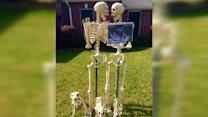 Family Puts Hilarious Spin on Halloween Decorations