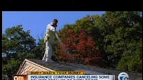 Don't Waste Your Money: Insurance companies and dirty roofs