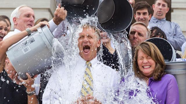 Is the Ice Bucket Challenge a One-Hit Wonder?