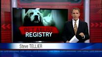 Some advocates push animal abuse registry (Part 1)