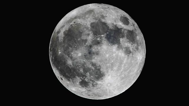 Lunar Prospector? Billionaire Wants Claims Staked on the Moon