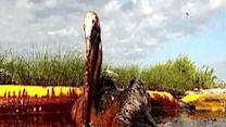 BP to pay US billions for Gulf spill