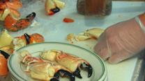 Miami's Hot Commodity; Stone Crabs Feed Presidents and Locals