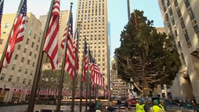 Workers raise Rockefeller tree