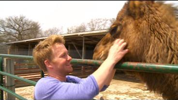 Finding Minnesota: Young Zookeeper Takes Animals On The Road