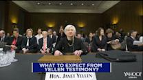 Yellen to testify in front of Congress