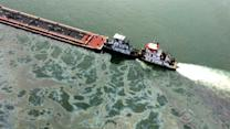 Oil in Galveston Bay spill difficult to clean up