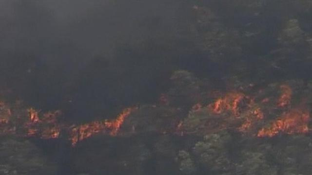 Scores of bushfires burn out of control in Australia