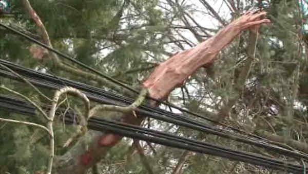 Connecticut residents cleanup after wind and rain create mess
