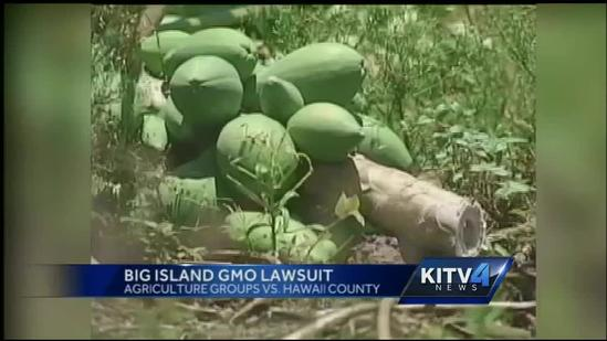 Battle over GMO on the Big Island