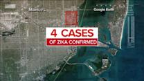 Zika Virus Arrives in Florida