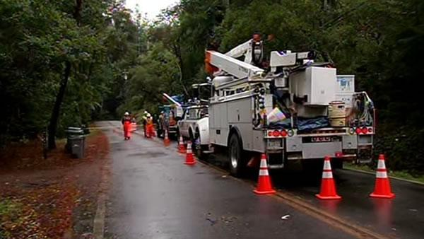 Downed tree causes power, traffic problems
