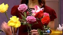 Valentine's Day Flowers: What do the colors mean?