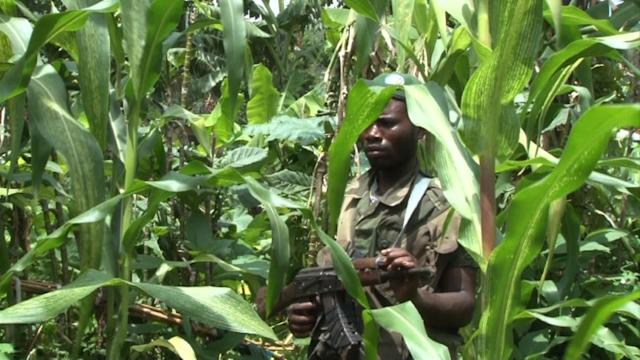DRC Militia loyal to government says will take on M23