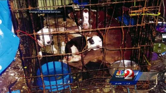 Officials: 2 children, 20 pets living in filth