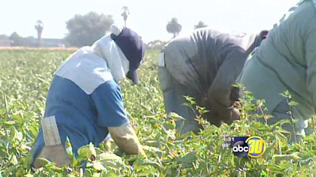 Ag officials say immigration reform is a necessity