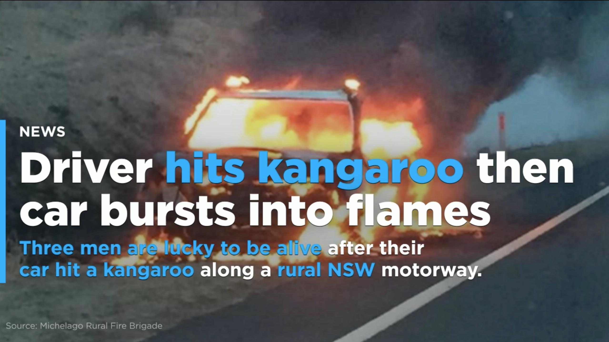 nsw car hits kangaroo bursts into flames at michelago