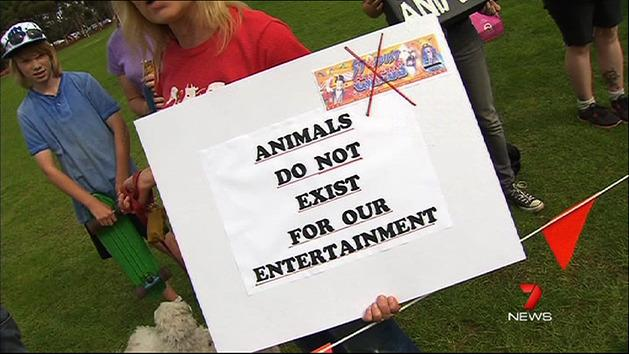 Protesters angry at 'animal cruelty'