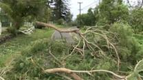 Hawaii assesses Iselle damage while watching Julio