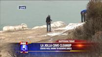 Crews Begin Cleaning La Jolla Cove Stench