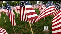 Thousands Of Flags Removed From Boston Common After Memorial Day