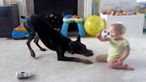 Pet Doberman Plays With 1-Year-Old Baby