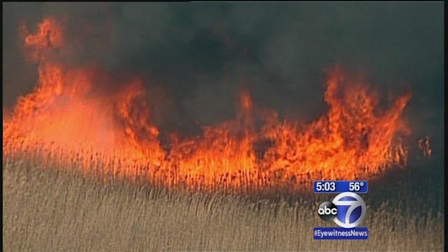 Brush fire burning in Edison