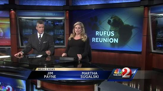 Rufus pardoned: Beagle goes home with family