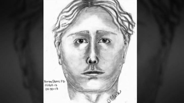 Suspect Sketch Released in Missing Michigan Mom Search