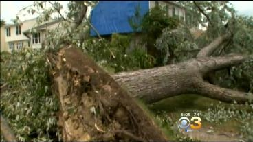 Voorhees Hit Hard By Storms, Cleanup Continues