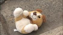Teddy Bear Bomb Far From Cuddly, Police Say