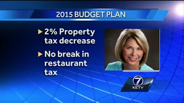 2015 budget proposes property tax cut