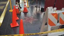 Police Investigate Vandalizing of Trump's Hollywood Star