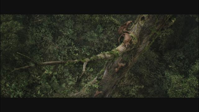 After Earth Clip 3