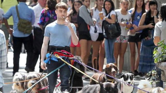 Daniel Radcliffe's Dog Day Out Is Trending on Facebook
