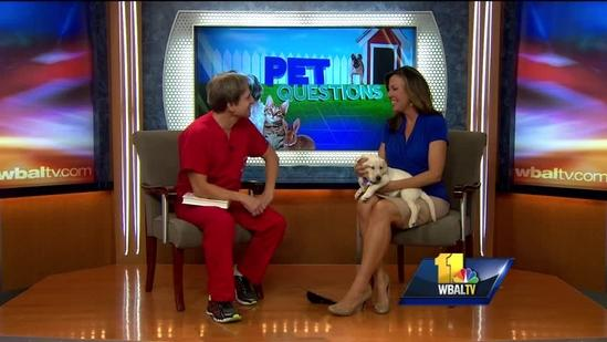 Dr. Kim Hammond answers your pet urination questions