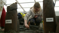 Did Britain have its own Pompeii?
