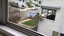 Amateur Video: Police Swarm Tsarnaev Hideout