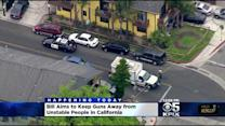 California Considers Gun Restriction Law For Mentally Unstable People After Isla Vista Killing Rampage