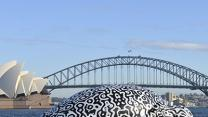 Raw: Giant Inflatable Turtle in Sydney Harbour
