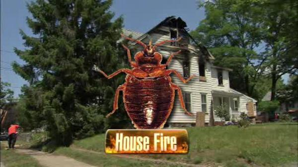 Woodbury home catches fire during bed bug battle
