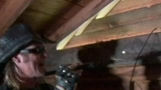Billy The Exterminator: Squirrels In The Attic