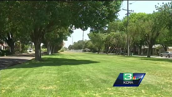 Is someone poisoning cats in Modesto?