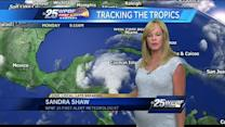 Tropical Depression No. 2 forms in Caribbean