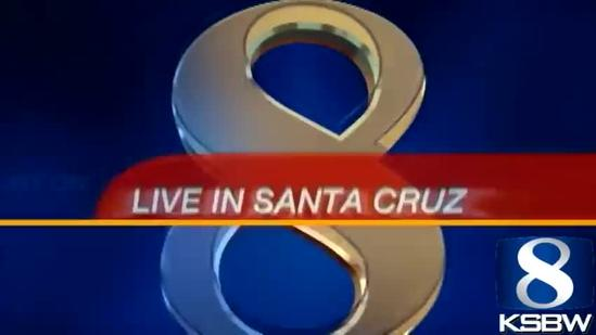 Santa Cruz citizen task force takes on drug needles