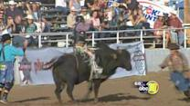 Clovis Rodeo has something for everyone