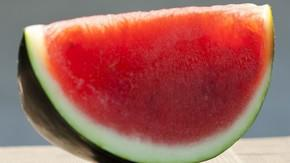Seedless Watermelon Coming To Grips With Fact It'll Never Be Able To Have Kids