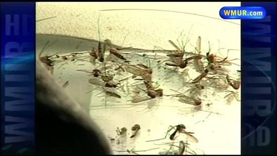 Crews test for presence of mosquitoes